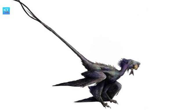 Phát hiện hóa thạch 'rồng nhảy' 120 triệu năm tuổi
